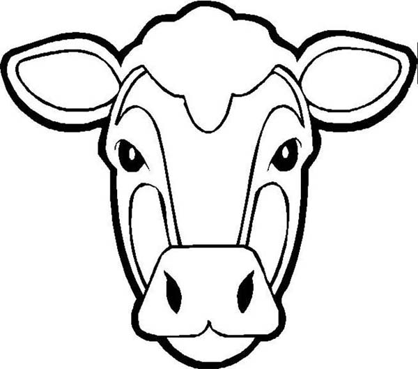 Picture of Cow Head Coloring Page - NetArt
