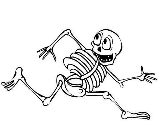 picture of skeleton coloring page
