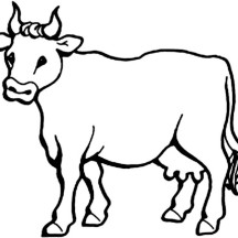 Picture of Milch Cow Coloring Page