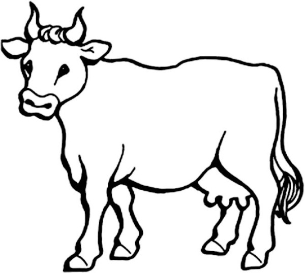 picture of milch cow coloring page - Cow Coloring Page