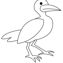 Seagull Outline Coloring Page