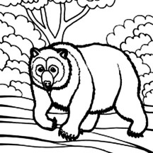 Bear Coloring Page for Kids
