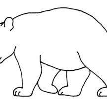Bear Outline Picture Coloring Page