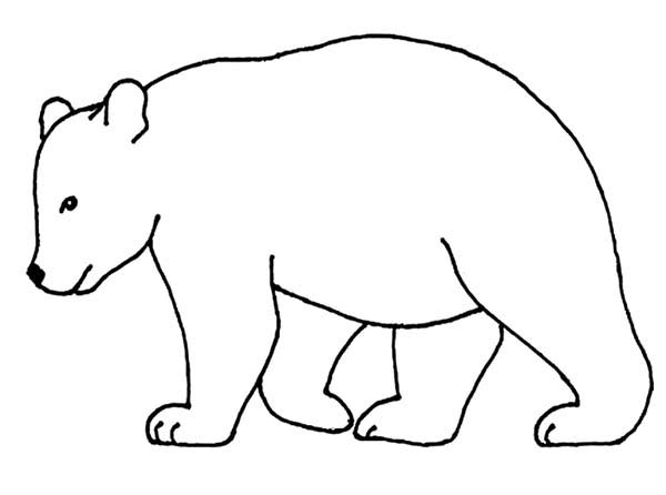 bear outline picture coloring page here home bear bear outline picture ...