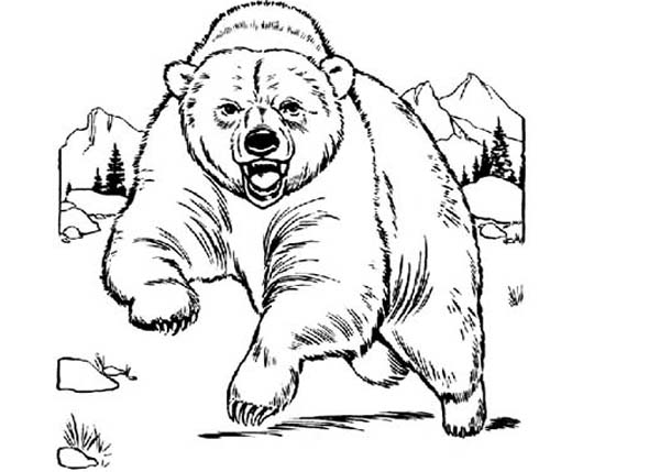 Bear is Angry Coloring Page NetArt