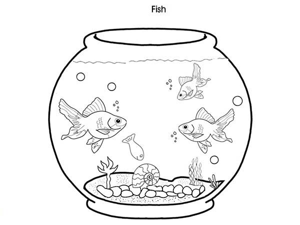 Free Coloring Pages Of Fish In A Pond