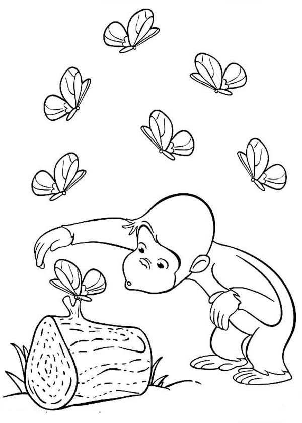 Curious george curious about butterfly coloring page netart for Curious george printable coloring pages