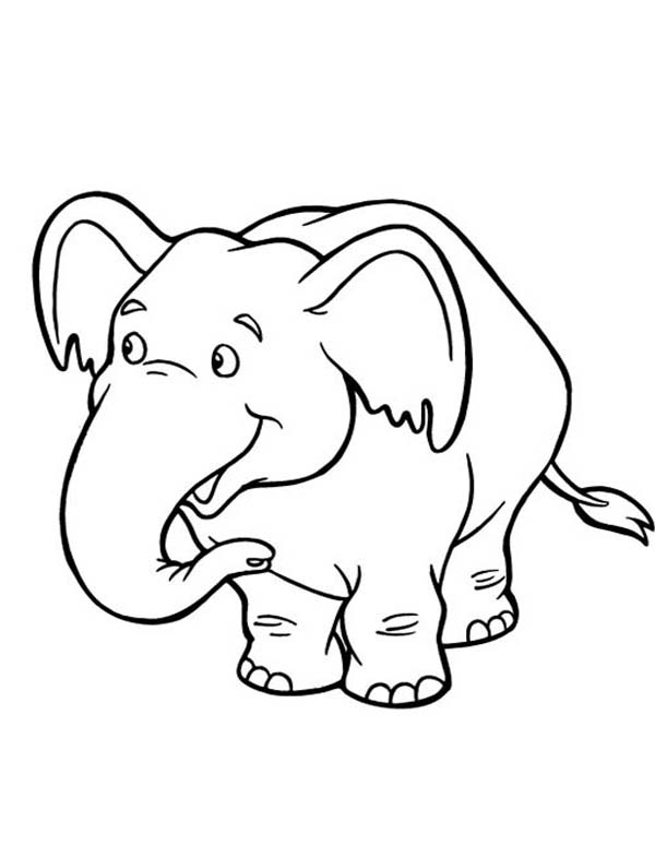 Cute Baby Elephant Coloring Page NetArt