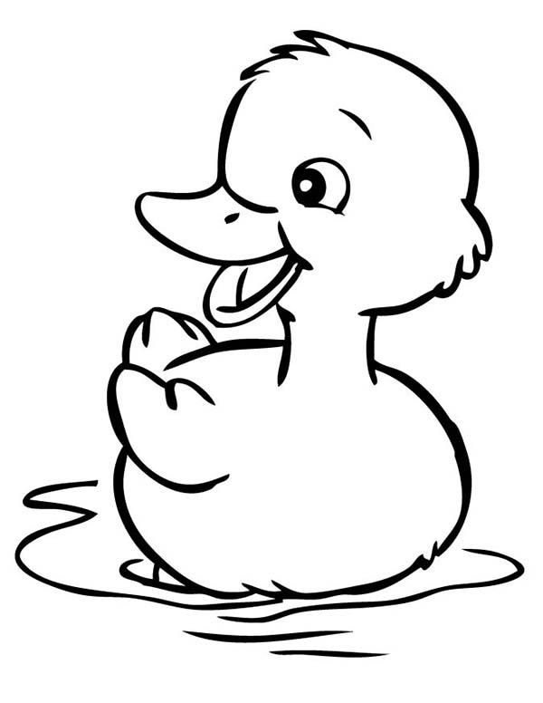 Cute Little Duck Coloring Page - NetArt