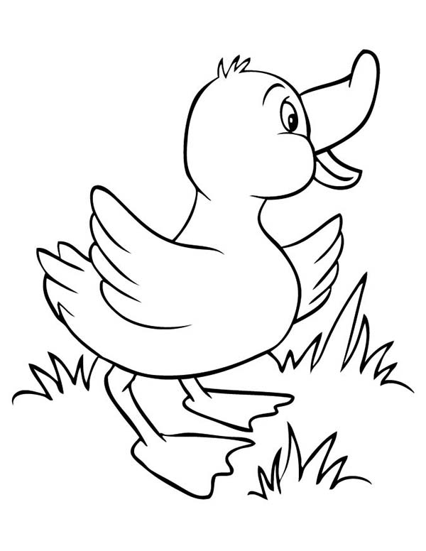Duck is Happy Coloring Page
