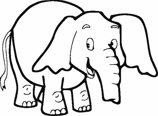 Elephant Coloring Page for Kids