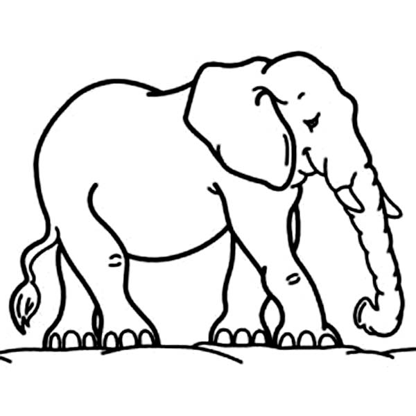 Elephant Mother Coloring Page