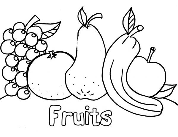 Fresh Fruit Coloring Page NetArt