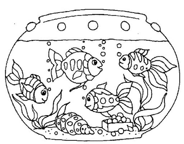 goldfish in the fish tank coloring page