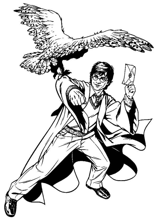 Harry Potter Owls Flying Coloring Pages