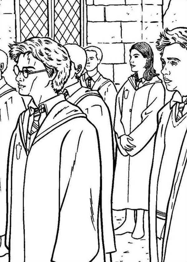 Harry Potter and Order of Phoenix Coloring Page  NetArt