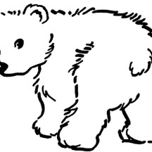 Little Baby Bear Coloring Page