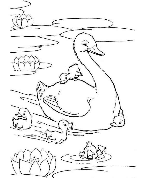 Free 1950's sheets coloring pages
