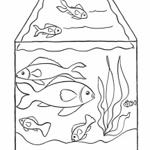 Pet Fish in Fish Tank Coloring Page