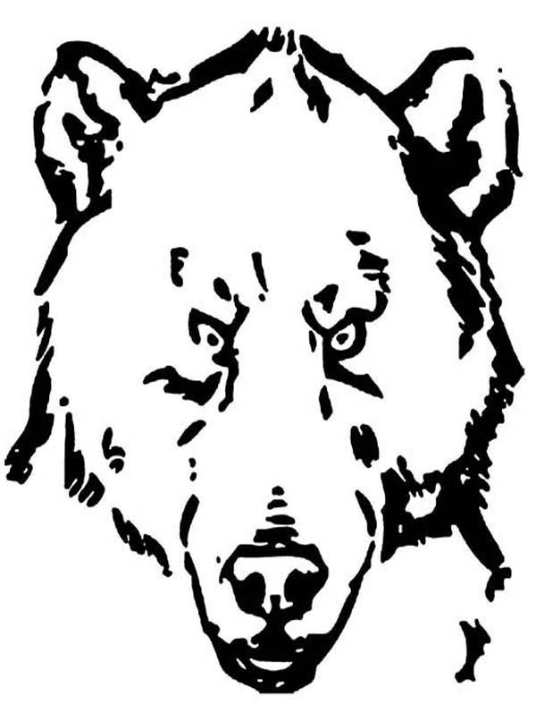Terifying Grizzly Bear Coloring Page