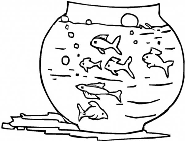 Too many fish in this fish tank coloring page netart for Fish tank coloring page