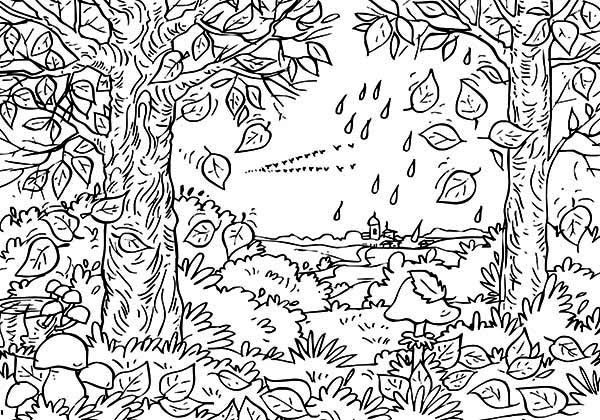 Autumn Leaf in the Forest Coloring Page NetArt