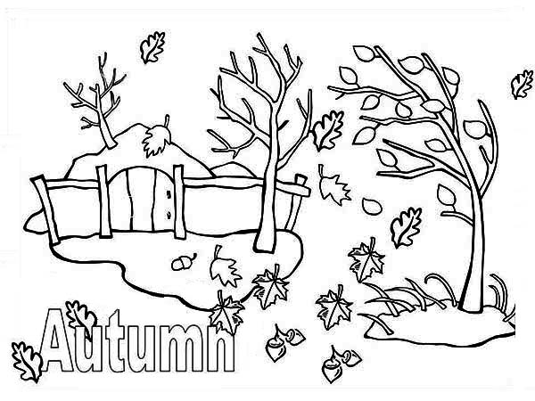 Autumn Season with Autumn Leaf Coloring Page NetArt