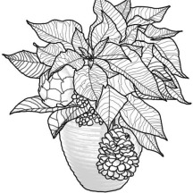 Poinsettia Bouquet for National Poinsettia Day Coloring Page