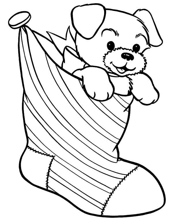 Puppy for Present in Christmas Stockings Coloring Pages - NetArt