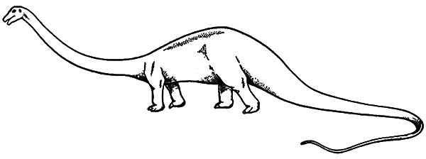 Amazing Animal Diplodocus Coloring Pages