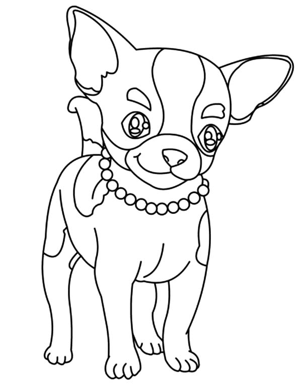 Beautiful Necklace Chihuahua Dog Coloring Pages