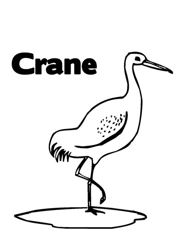 C is for Crane Bird Coloring Pages