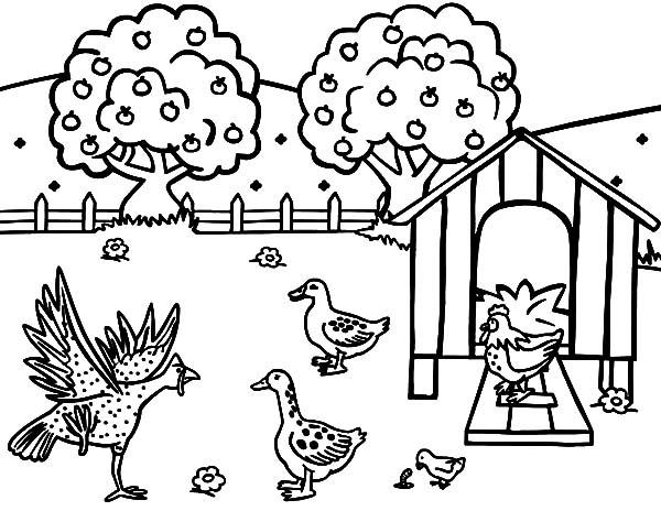 Chicken Coop Coloring Pages for Kids