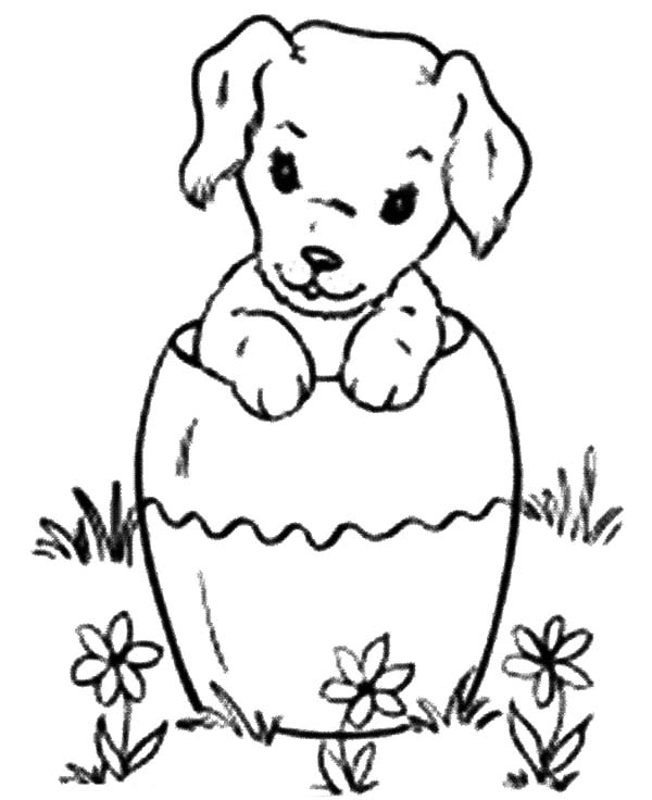Chihuahua Dog Inside Pottery Coloring Pages