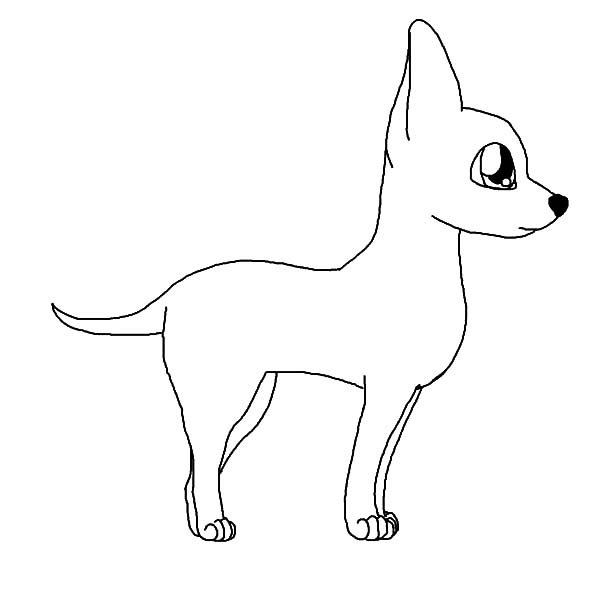 Chihuahua Dog Outline Coloring Pages
