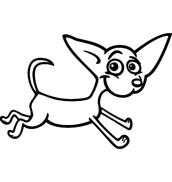 running chihuahua cartoon for coloring