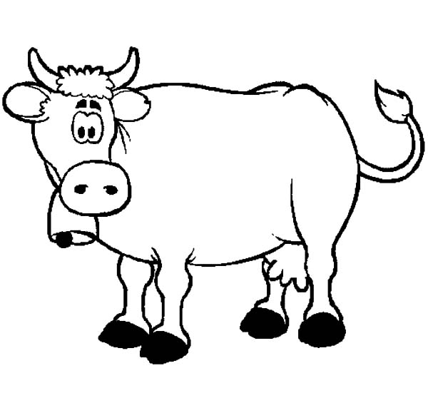 Confused Dairy Cow Coloring Pages
