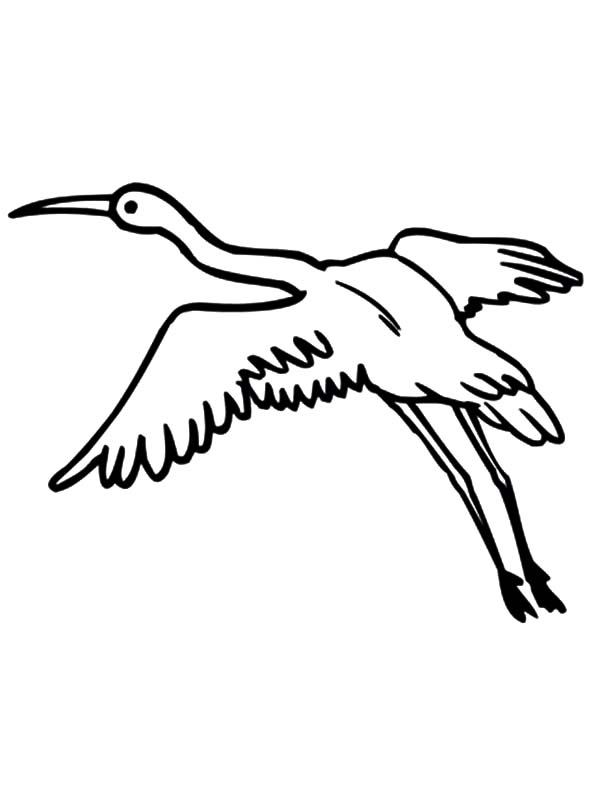 Crane Bird with Wings Widespread Coloring Pages