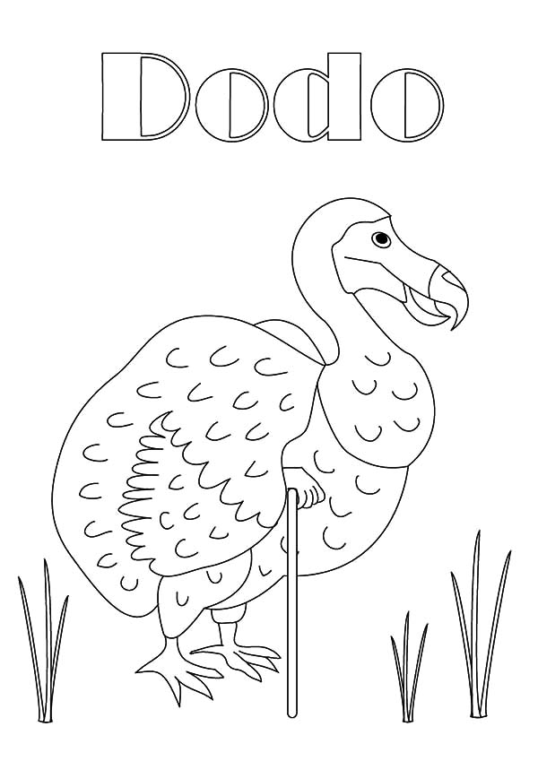 D is for Dodo Bird Coloring Pages