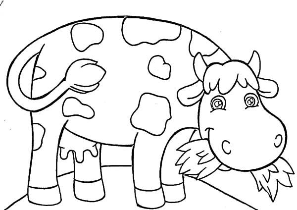 Dairy Cow | NetArt