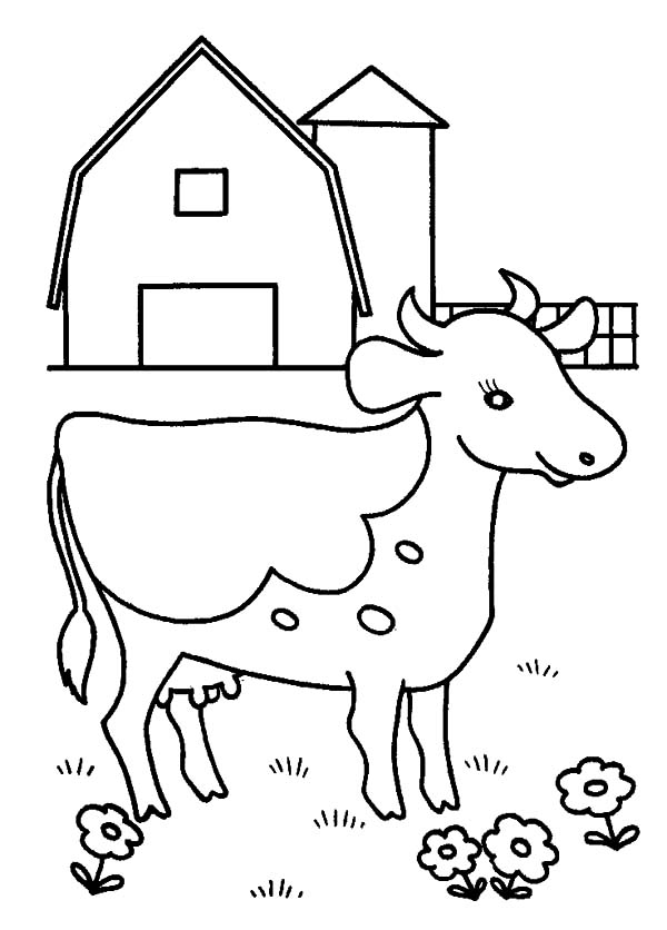 Dairy Cow Farm Coloring Pages