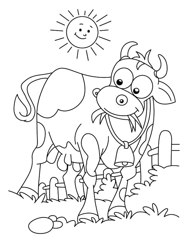 Dairy Cow on the Meadow Coloring Pages