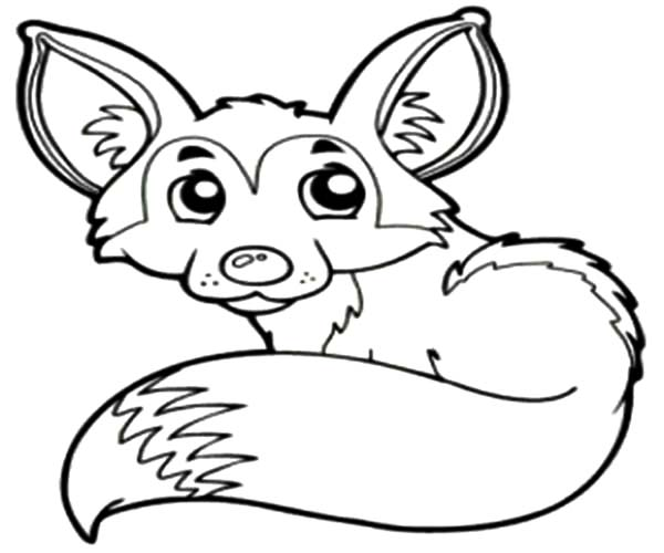 Desert Fox Lay Down Coloring Pages