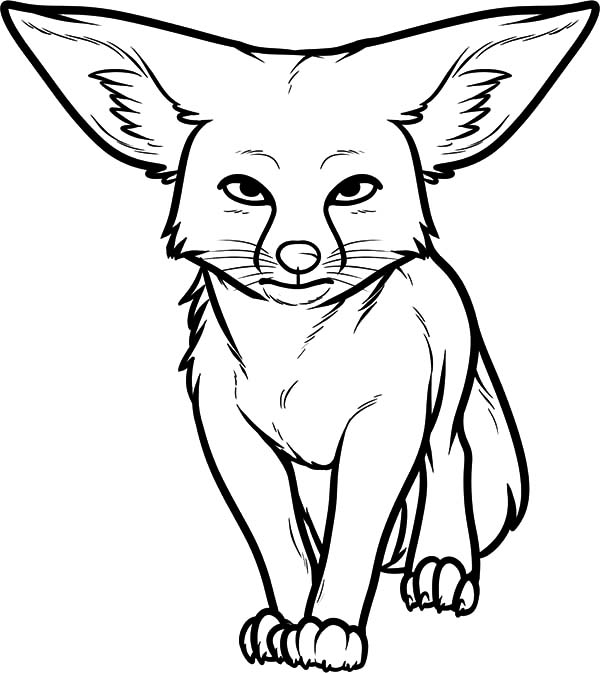 Desert Fox Staring Coloring Pages