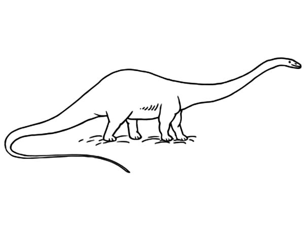 diplodocus coloring pages - photo#26
