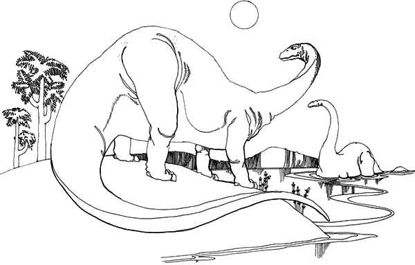 Diplodocus Play at Lake Side Coloring Pages