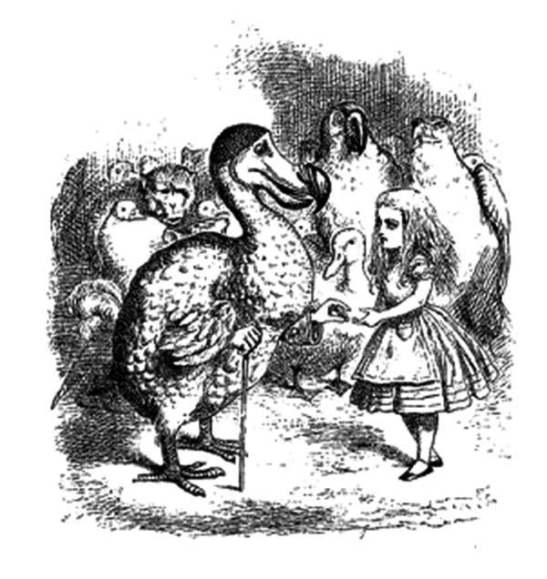 Dodo Bird Meet Alice Coloring Pages