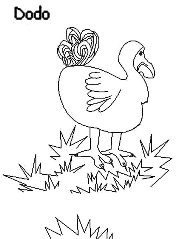 Dodo Bird Stepping on Grass Coloring Pages