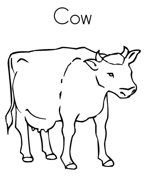 Healthy Dairy Cow Coloring Pages