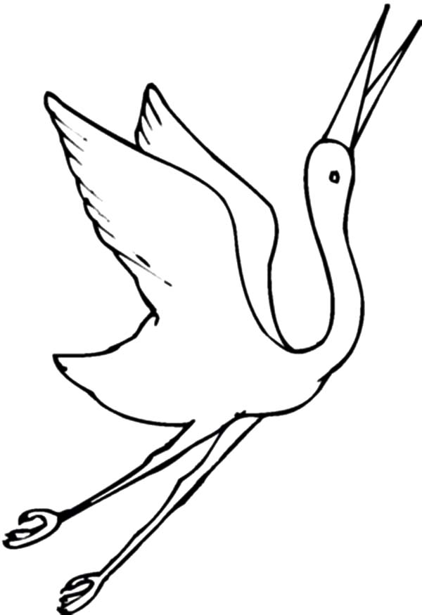 Crane Bird Flying Drawing
